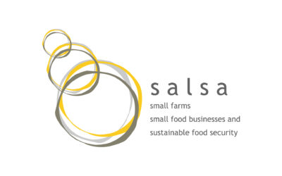 Key SALSA messages presented at the European Commission